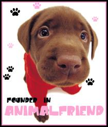 Se al vostro cane non piace una persona, probabilmente non piace neanke a voi. (Anonimo)