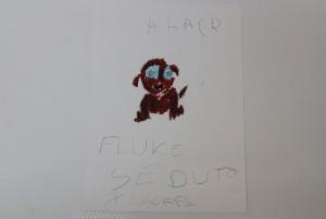 Per Denise il suo Fluk ha gli occhi azzurri