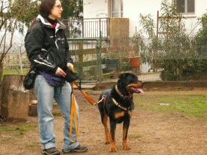 Leon è quello più basso ;))